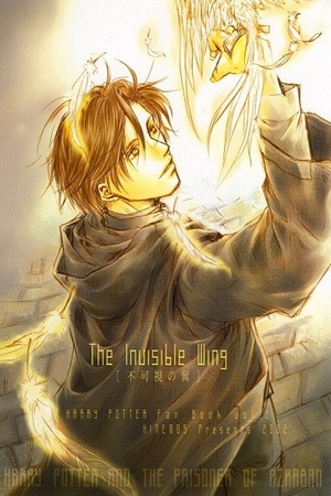 Harry Potter - The Invisible Wing